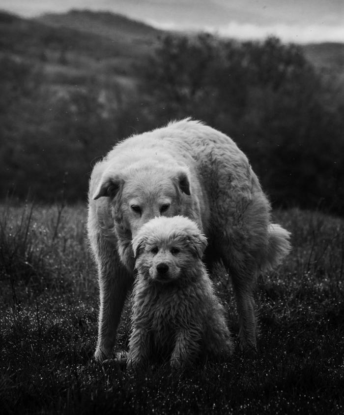 Фотографии Марко Сгарби - Фотошкола Михаила Панина