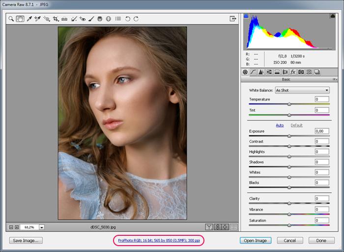 Настройка цветового пространства - Adobe Camera Raw