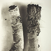 Фотограф Ирвинг Пенн (Irving Penn) — Окурки (The cigarettes) — Натюрморт (Still life)