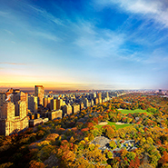 Central Park, NYC - Фотограф Стивен Уилкс (Stephen Wilkes)