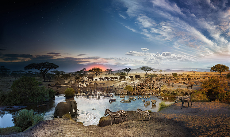День и ночь в одной фотографии - Необычные панорамы - Фотограф Стивен Уилкс (Stephen Wilkes)